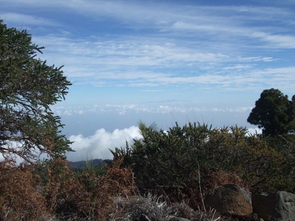 Вид на остров Тенерифе