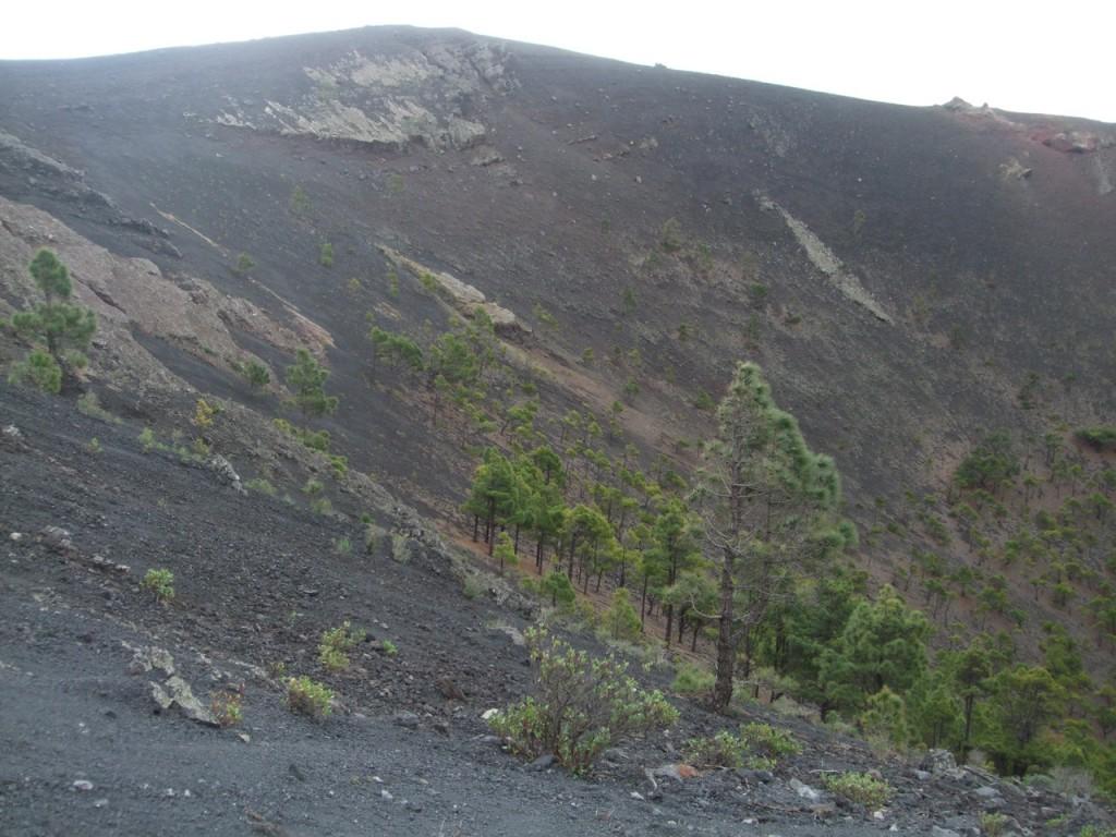 Кратер вулкана San Miguel