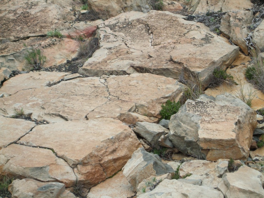 Разрушенный петроглиф